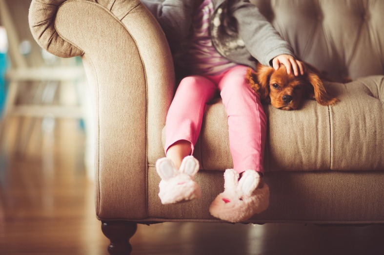child dog sofa