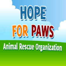 HOPE FOR PAWS SQUARE